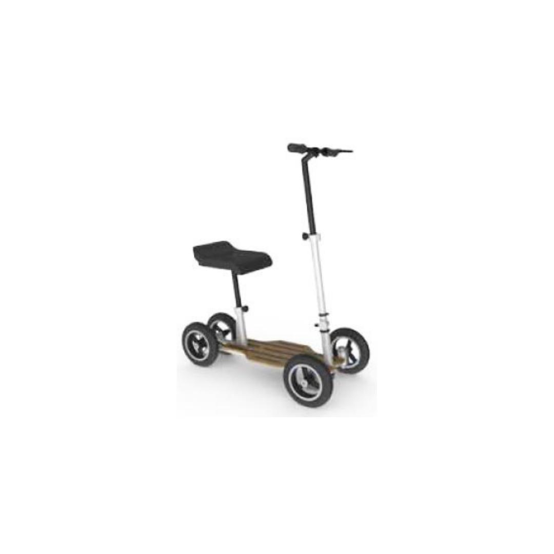Kick Scooter with Seat