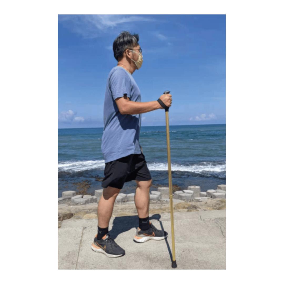 Walking Stick2